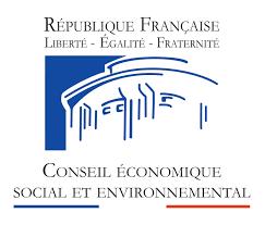 Tribune – « L'égalité entre les femmes et les hommes : un non-sujet pour le nouveauConseil Économique Social et Environnemental ? Quid de la grande cause du quinquennat ? »